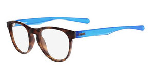 Dragon DR118 DEX 215 DARK TORTOISE-BLUE
