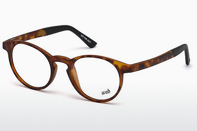 Akiniai Web Eyewear WE5186 053 - Havanna, Yellow, Blond, Brown