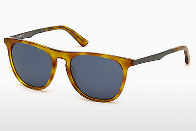 Akiniai nuo saulės Web Eyewear WE0160 53V - Havanna, Yellow, Blond, Brown